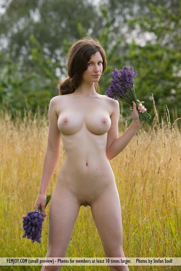 susann-in-lavender