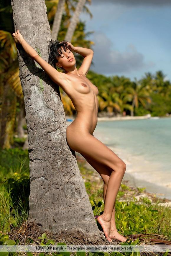 luna-in-coconut-beach